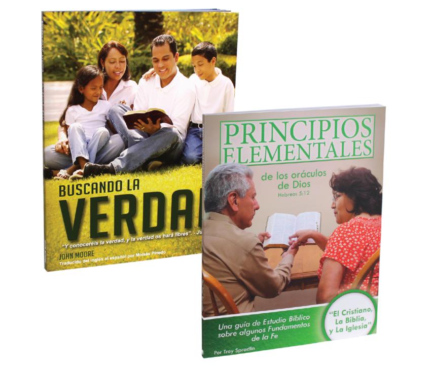 spanish workbook bundle